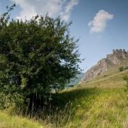 Cetatea Trascaului sau Cetatea Coltesti, Muntii Trascau
