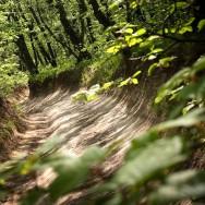 Drumuri prin pădure, Culmea Pietrosu_Muntii Macin 1 Mai 2011 Culmea Pricopanului_Cozluk_Fundu_Plopilor