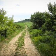 bicicleta-bulgaria-orlova-chuka-katselovo-sadina-cherven_36