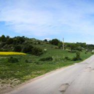 bicicleta-bulgaria-orlova-chuka-katselovo-sadina-cherven_37