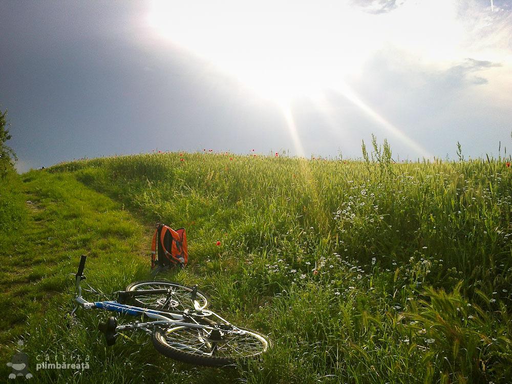 Bicicleta- soc - maci si natura la Manastirea Tiganesti_14