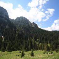 Bucegi - traseu Bran - Ciubotea - Clincea - Bran_23