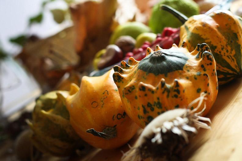 Cartitaplimbareata - Tartacutele - perfecte pentru decoratiuni de toamna_616