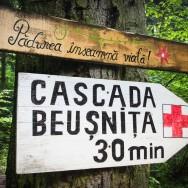 Cascada Beusnita 003