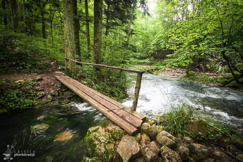 Podeata de lemn de la confluenta Beiului cu Beusnita