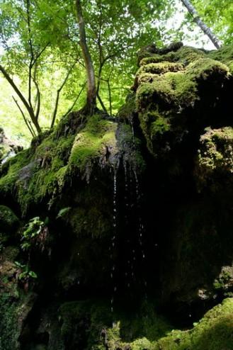 Cascada Beusnita secata