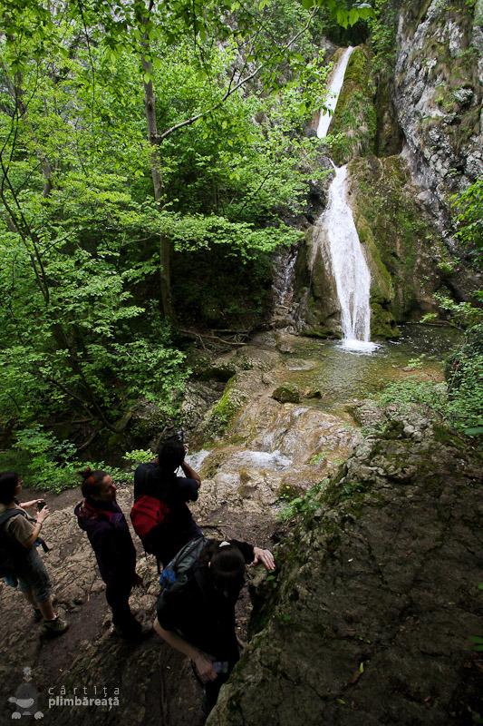 Cascada Susara - Parcul National Cheile Nerei - Beusnita_05