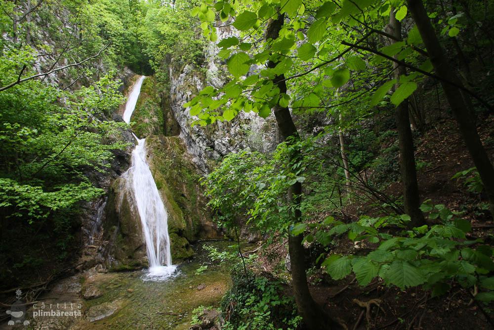 Cascada Susara - Parcul National Cheile Nerei - Beusnita_07