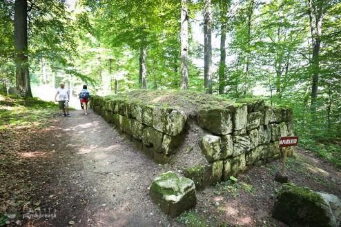 Cetatea Dacica Sarmizegetusa Regia Muntii Sureanu_07