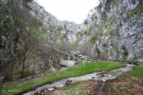 Una din poienile din chei (Cheile Tasnei-Valea Cernei, Muntii Mehedinti)