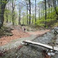 La iesirea din chei (Cheile Tasnei-Valea Cernei, Muntii Mehedinti)
