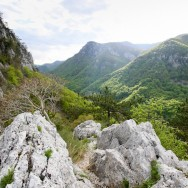 Panorama asupra Vaii Cernei Pereti de calcar si pini negri de Banat