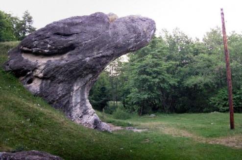 Piatra Broastei - Calcarele Cretacice de la Cisnadioara