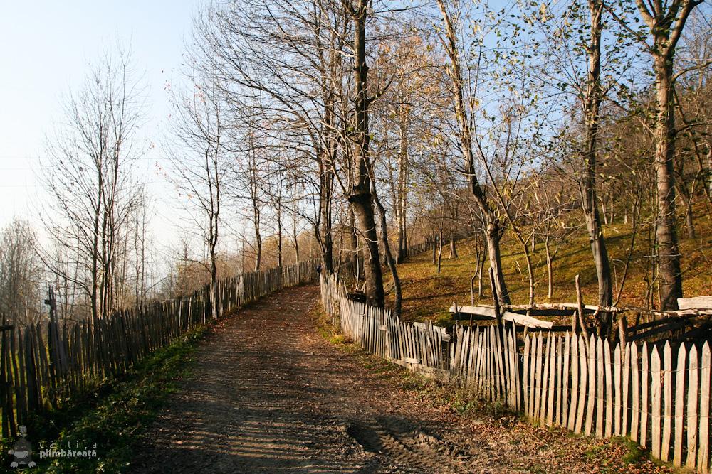 Cu bicicleta pe Valea Doftanei - Lacul Paltinu - Ghimpoasa