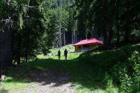 Fagaras traseu Piscul Negru - Lacul Caltun_03