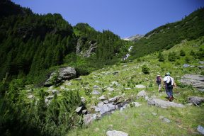 Fagaras traseu Piscul Negru - Lacul Caltun_07