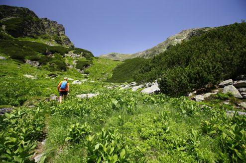 Fagaras traseu Piscul Negru - Lacul Caltun_14