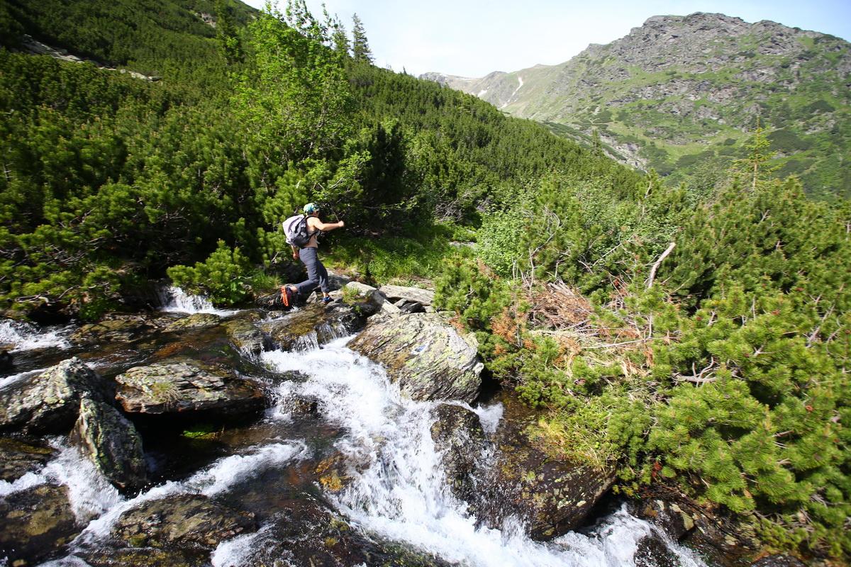 Fagaras traseu Piscul Negru - Lacul Caltun_29