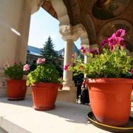 Manastirea Ramet si Cheile Rametului_Cartitaplimbareata_018