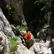 Padina si Valea Horoabei - Bucegi - iulie 2016_13