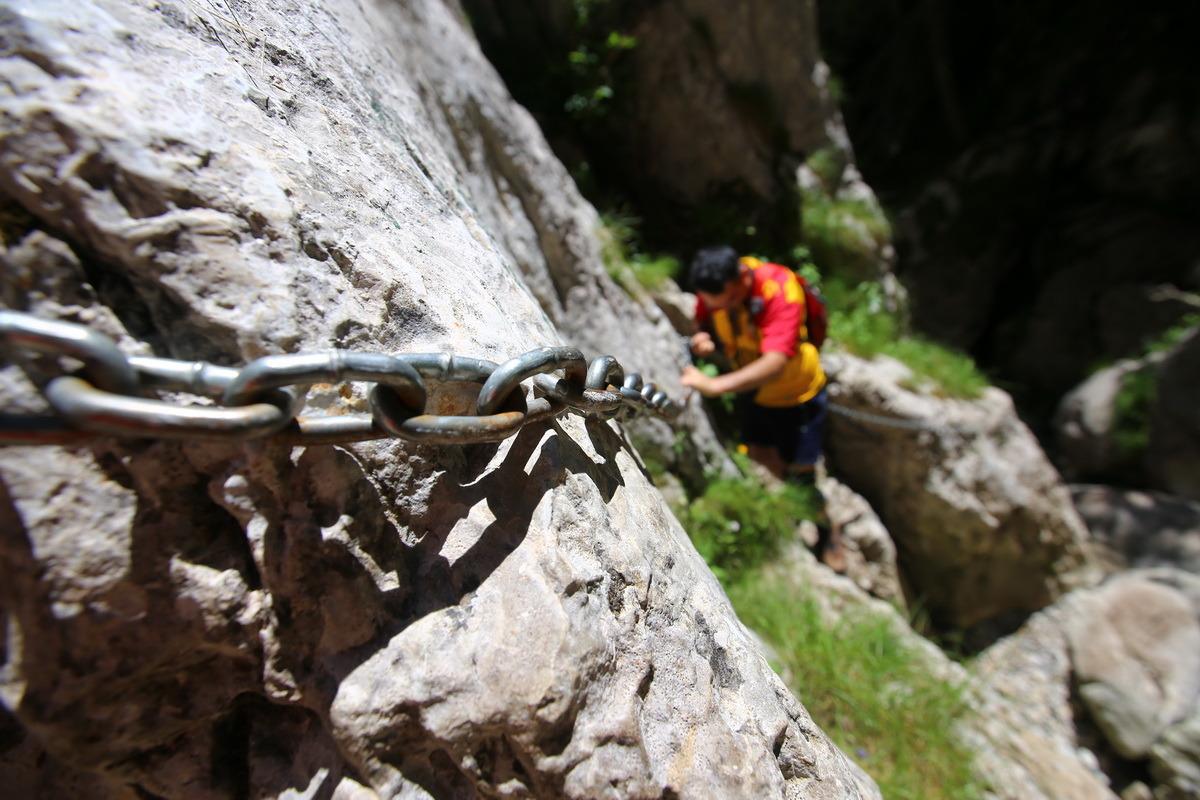 Padina si Valea Horoabei - Bucegi - iulie 2016_14