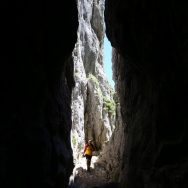 Padina si Valea Horoabei - Bucegi - iulie 2016_16