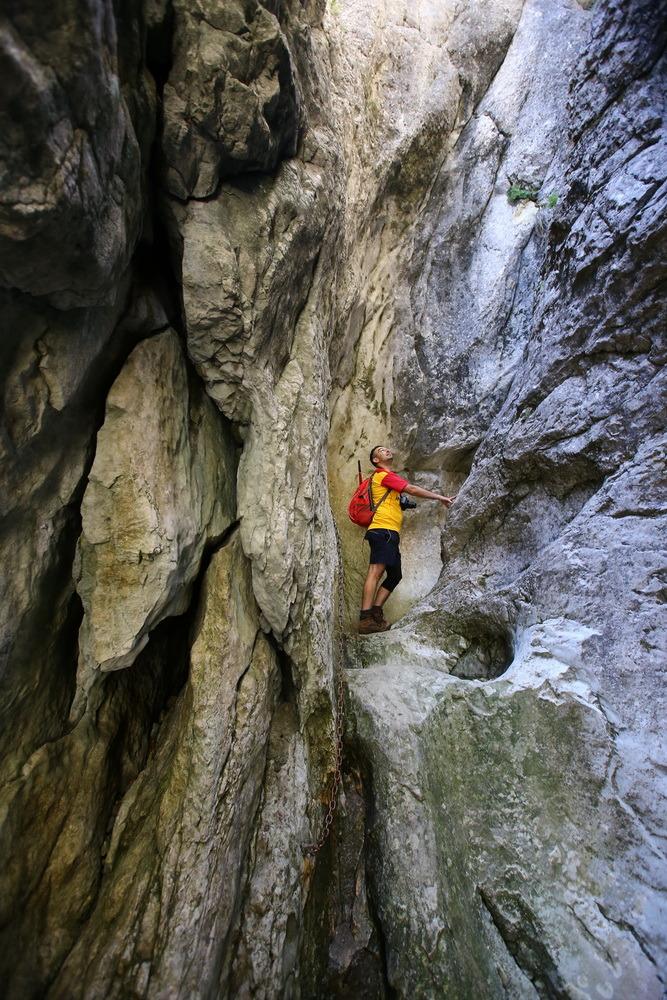 Padina si Valea Horoabei - Bucegi - iulie 2016_17