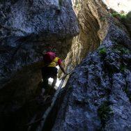 Padina si Valea Horoabei - Bucegi - iulie 2016_18
