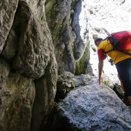 Padina si Valea Horoabei - Bucegi - iulie 2016_19