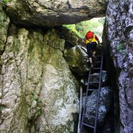 Padina si Valea Horoabei - Bucegi - iulie 2016_21