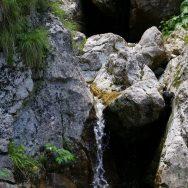Padina si Valea Horoabei - Bucegi - iulie 2016_29