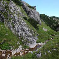 Padina si Valea Horoabei - Bucegi - iulie 2016_55