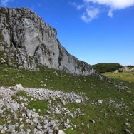 Padina si Valea Horoabei - Bucegi - iulie 2016_63