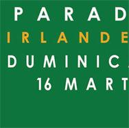 Parada-Irlandeza-marite-2014_7