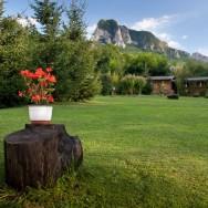 Inca o muscata - Pensiune Camping Gyopar