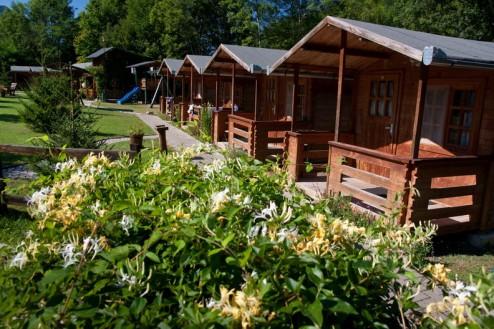 Casute in miresme de Manusa Doamnei - Pensiune Camping Gyopar