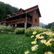 Pensiunea Floare de Colt - Poiana Galdei (zona Intregalde)_06_resize