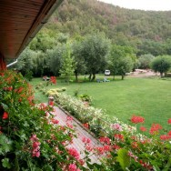Pensiunea Floare de Colt - Poiana Galdei (zona Intregalde)_15_resize