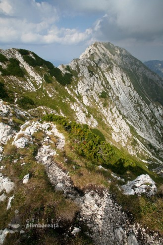 Coama Lunga - Piatra Craiului Creasta Sudica