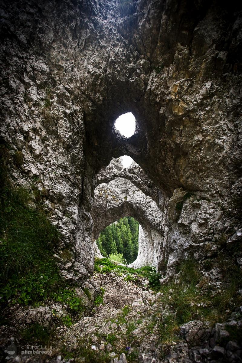 Piatra Craiului- Plaiul Foii - Zaplaz - La Lanturi - Creasta Nordica - Curmatura - Fantana lui Botorog_01