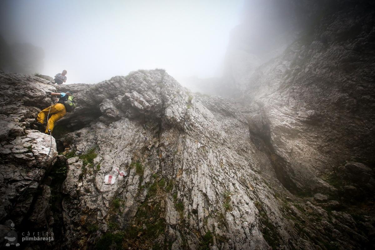 Piatra Craiului- Plaiul Foii - Zaplaz - La Lanturi - Creasta Nordica - Curmatura - Fantana lui Botorog_05