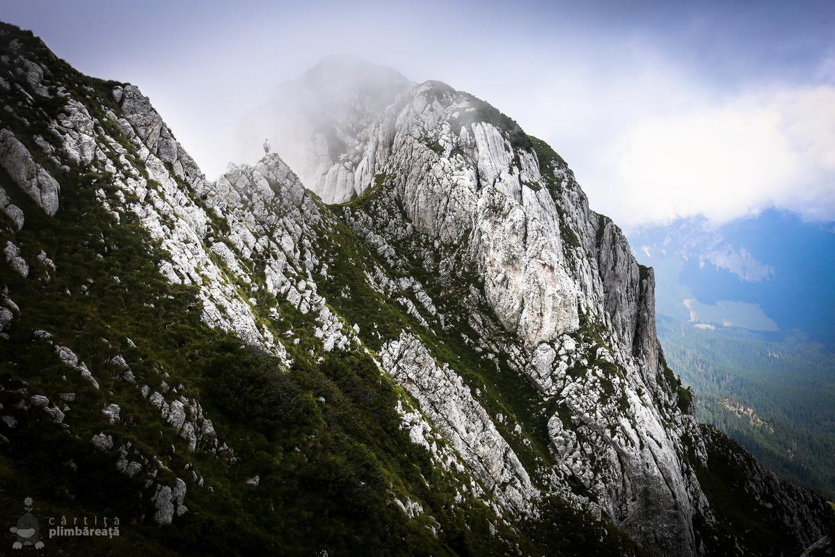 Piatra Craiului- Plaiul Foii - Zaplaz - La Lanturi - Creasta Nordica - Curmatura - Fantana lui Botorog_09