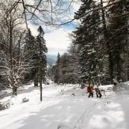Plimbare pe schiuri Gura Diham Poiana Izvoarelor_01