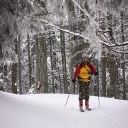 Plimbare pe schiuri Gura Diham Poiana Izvoarelor_04