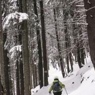 Plimbare pe schiuri Gura Diham Poiana Izvoarelor_05