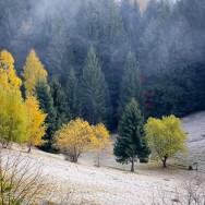 Plimbare si fotografii prin Pestera - Rucar - Bran_02