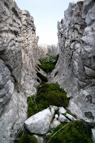 Podul-lui-Dumnezeu-si-campul-de-lapiezuri-Ponoarele-Mehedinti