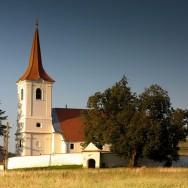 Teiul din Leliceni, Cartitaplimbareata.ro
