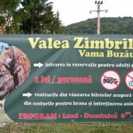 Zimbraria Valea Zimbrilor - Vama Buzaului - judetul Brasov